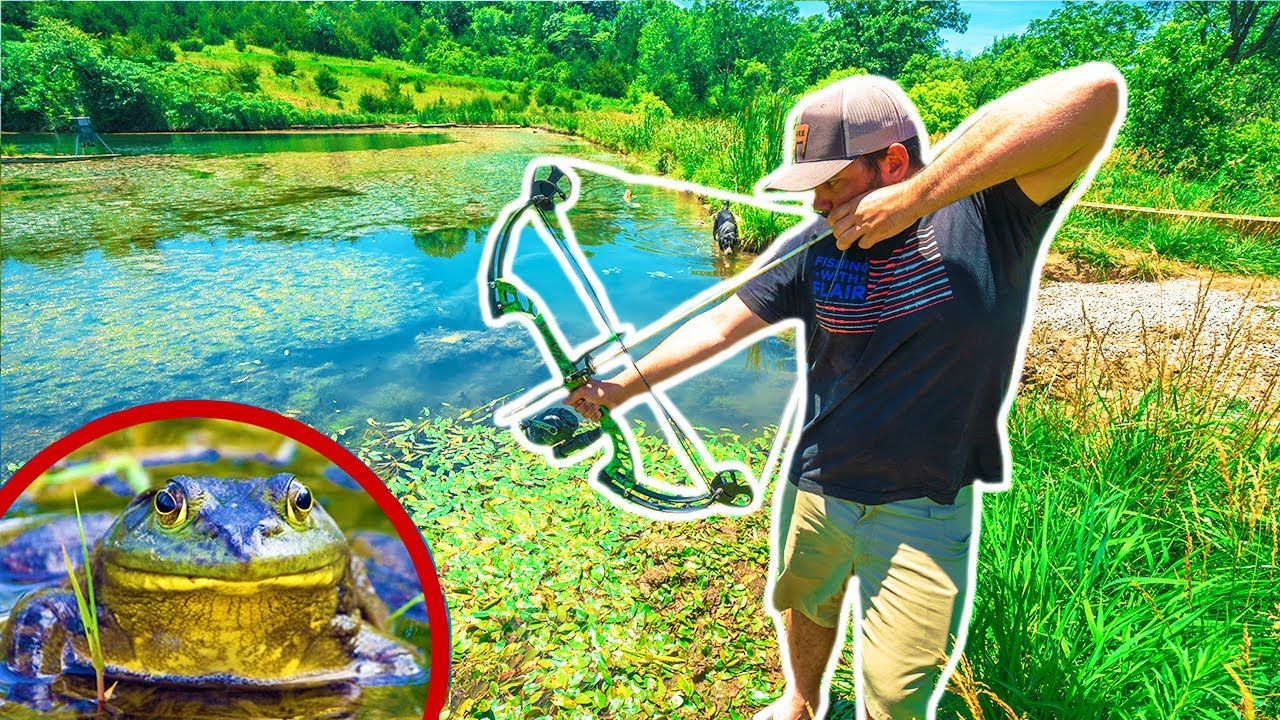 BOWFISHING for GIANT BULLFROGS!!! (Catch Clean Cook)