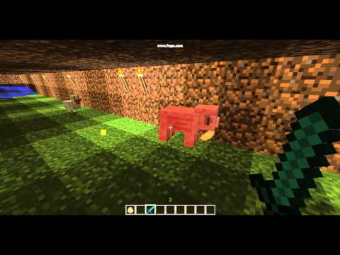 Diamond sword fire aspect 1 v.s. chicken and cow.