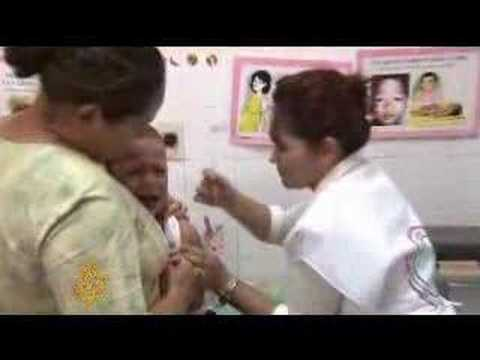 Yellow fever crisis in Paraguay - 28 Feb 08