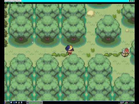 pokemon shiny gold how to get pass farfetch
