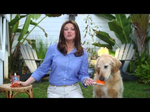 Dog Bad Breath Eliminator