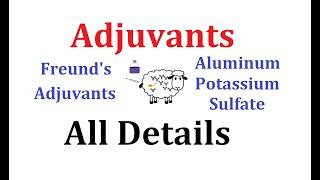 Adjuvants: Animated explanation (Alum, Freund