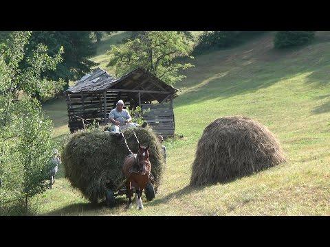Romania, Transylvania Hay Camp 2015 Part 3