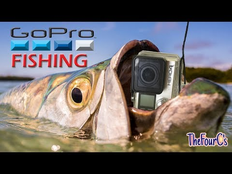 Catch a MONSTER Fish With a GoPro??