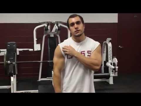 Exercises to INCREASE Bench Press