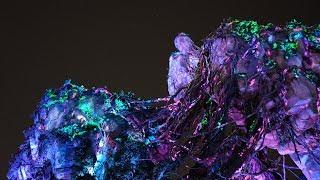 A Nighttime Look At Pandora World Of Avatar At Disney