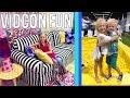 Vidcon Fun 2018 - Alyssa's Dream Room & Michael Meets Everleigh mp3