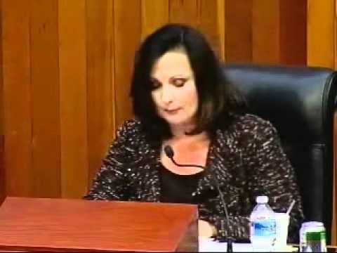 Greensboro City Councilor Nancy Vaughan on North Carolina's Amendment One