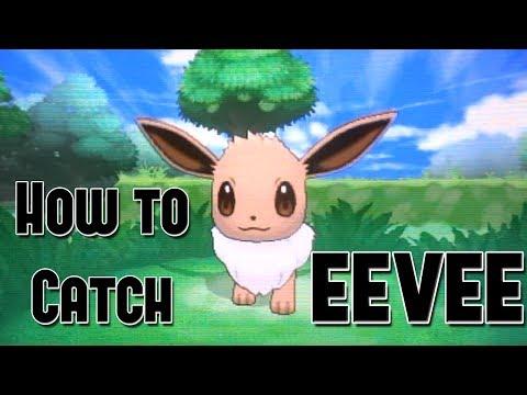 How to Catch Eevee - Pokemon X and Y