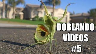 DOBLANDO VÍDEOS #5 - xurxocarreno