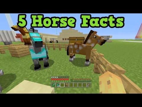 Minecraft Xbox 360 / PS3 - 5 Cool Horse Facts