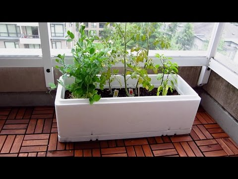 How to make a planter out of a foam box