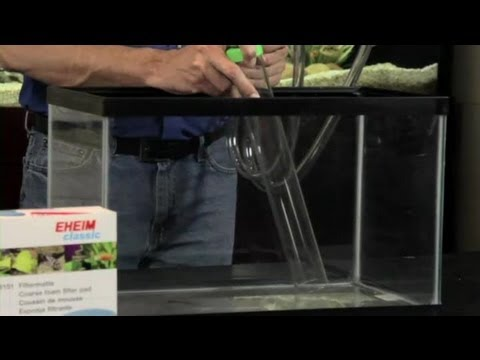 How to Keep a Fish Tank Smell Down : Aquariums & Fish Tanks