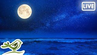 Relaxing Sleep Music 24/7 • Fall Asleep, Stress Relief, Ambient Meditation Music