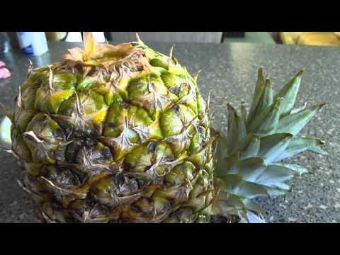 Pineapple Ripening Technique
