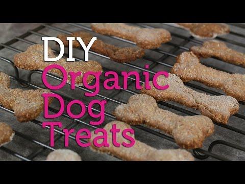DIY Organic Dog Treats | Easy Recipe