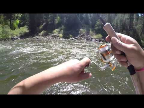 CATCHING TROUT FROM THE BANK FISHING WITH WORMS