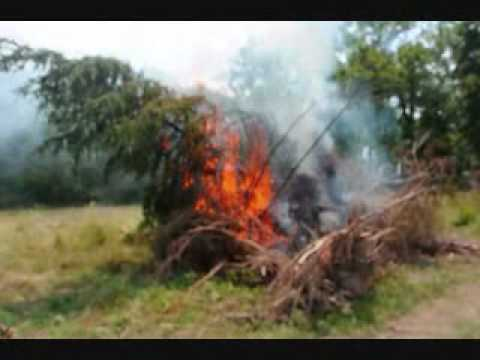 Burning Brush Piles and Stumps