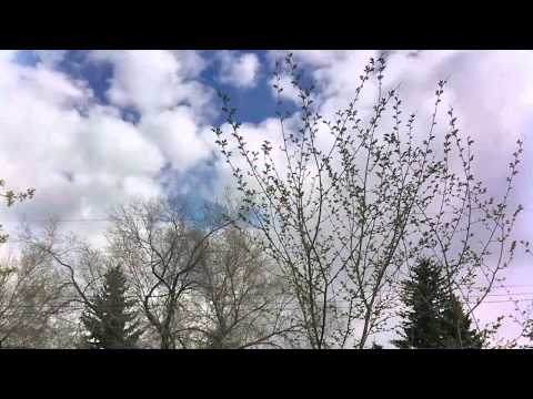 Time-lapse with iPhone 3GS and Gorillacam App