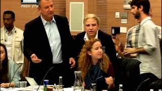 ערוץ הכנסת - סתיו שפיר מסולקת מוועדת הכספים, 8.12.14