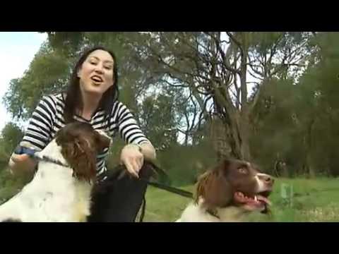 Dogs train for African safari