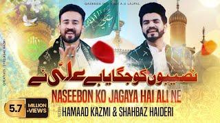 Naseebon Ko Jagaya Hai Ali Ne - Hammad Kazmi & Shahbaz Haideri | New Qasida 2020
