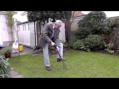Amateur Gardening video: Tim spiking lawn