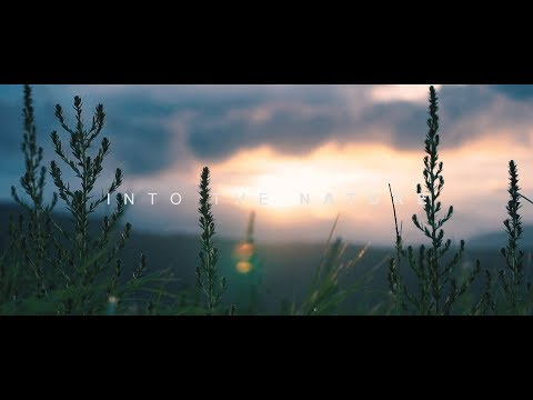 Into The Nature - Cinematic Travel Video | Sony a6300