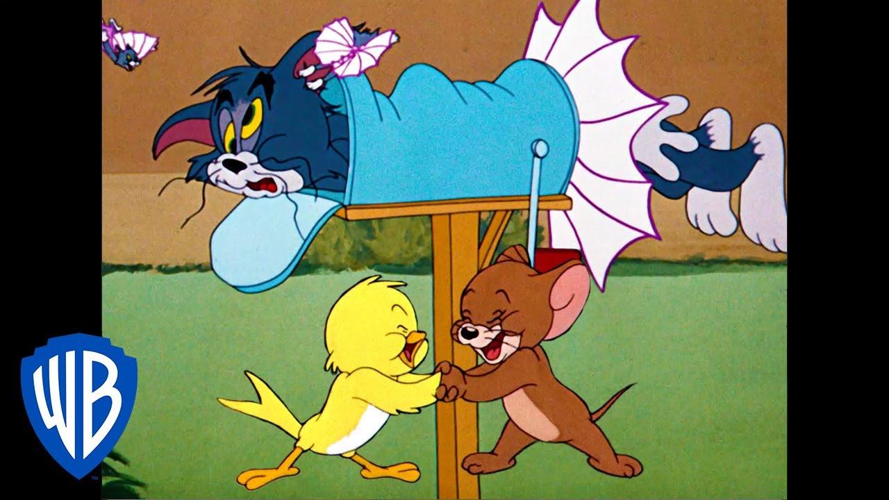 Tom & Jerry |  B-b-b-birds! | Classic Cartoon Compilation | WB Kids