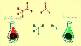 Download Сколько сильных и слабых кислот и оснований? Джордж Зайдан и Чарльз Мортон #TED-Ed Video