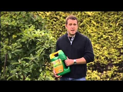 How To Use EverGreen Autumn Lawn Care