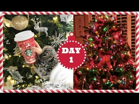 Vlogmas 2016 ❄ Day 1 | Early Mornings & NYC Christmas Tree