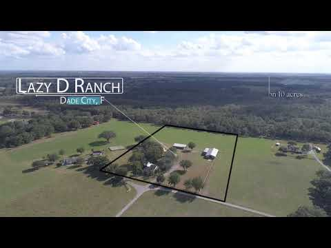 Lazy D Ranch - Dade City, FL