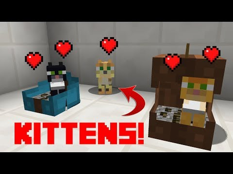 Minecraft - How To Make a Cat Litter Box and a Cat Carrier