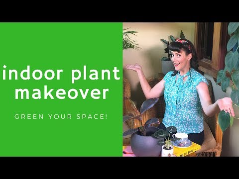 Indoor Plant Makeover // Design Ideas with House Plants // The Gardenettes