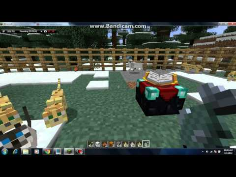 Minecraft How to Tame an Ocelot(cat)