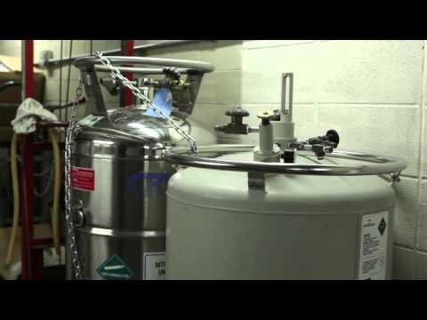 Filling and Maintenance of Liquid Nitrogen Tanks