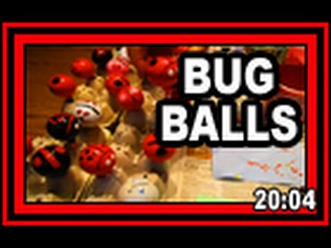 Bug Balls - Wisconsin Garden Video Blog 697