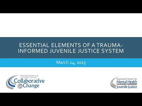 Essential Elements of a Trauma Informed Juvenile Justice System