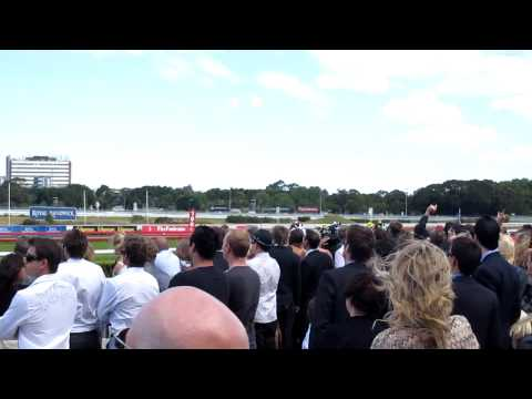 Randwick Races