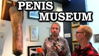 Download Joe Goes To The Penis Museum In Iceland Video