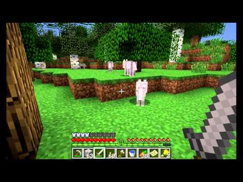 Minecraft GTTE #9: Scavenging for feathers; making arrows and a bow