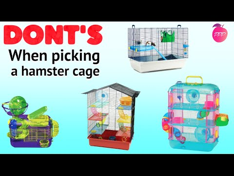 DONT'S WHEN PICKING A HAMSTER CAGE