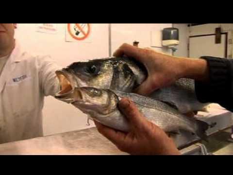 How to: Buy Fresh Fish