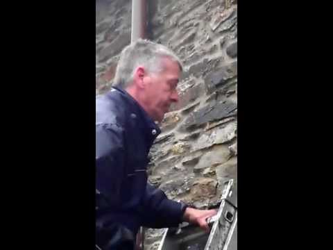 Steve's Tips - Removing Moss From Exterior Walls