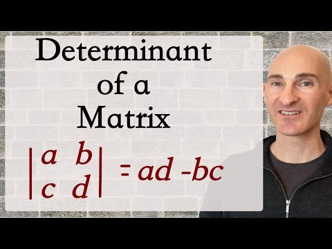 Determinant of a Matrix - How to Find (2x2 & 3x3)