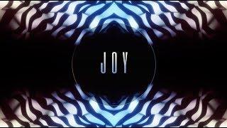 Joy (Part 3)