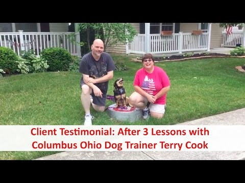 Top Columbus Ohio Dog Trainer Terry Cook: Client Testimonial Review: Aggressive Dog