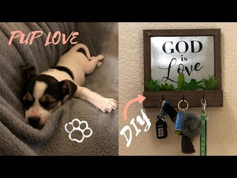 Puppy morning routine + key and leash hook DIY