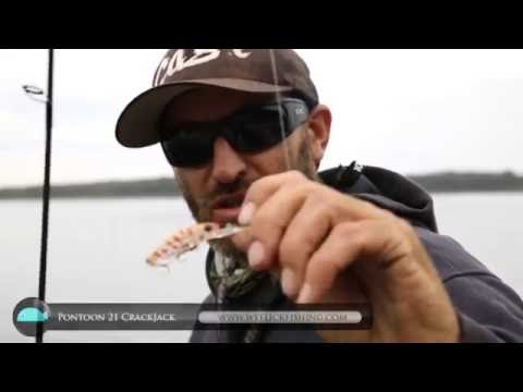 Bream Fishing With Hard Body Lures | Pontoon 21 Crackjack